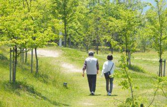 シニア活躍中!ポスティングアルバイトなら定年退職後も健康的に働けます
